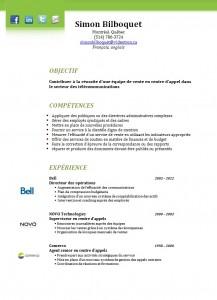 Exemple CV couleur