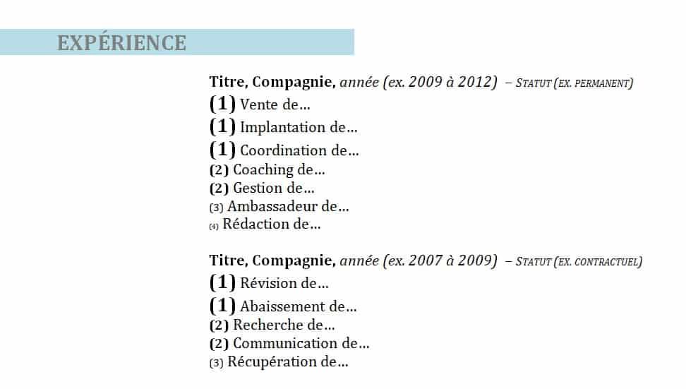 Section « Expérience »