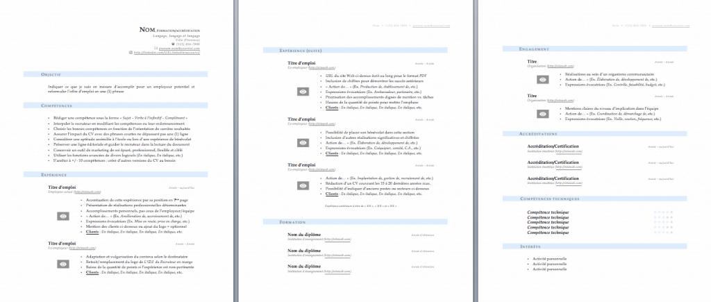 cv exemple au quebec Best buy financial statement analysis essays Pinterest