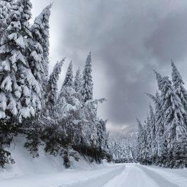 C'est l'hiver, parlons-en!