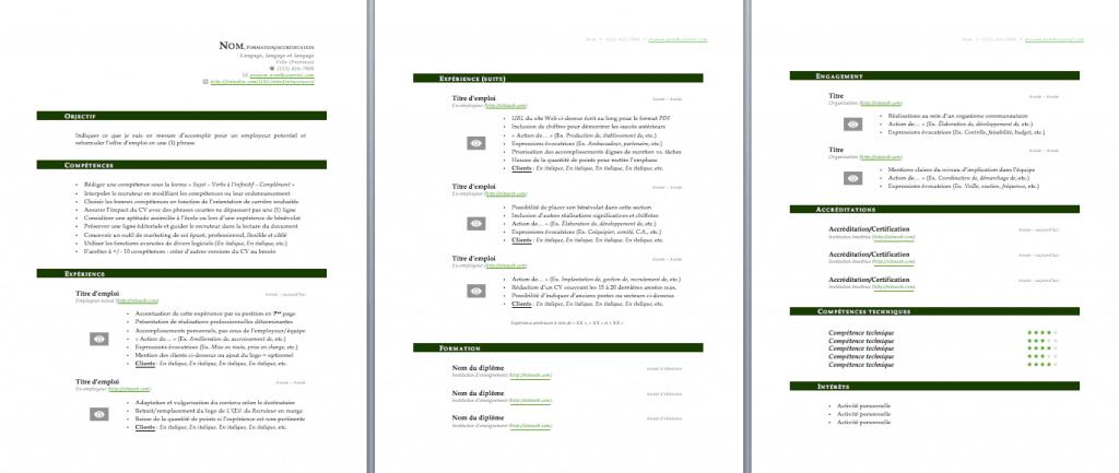 Modèle de CV vert