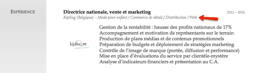 Exemple_CV_Belgique_Experience_4