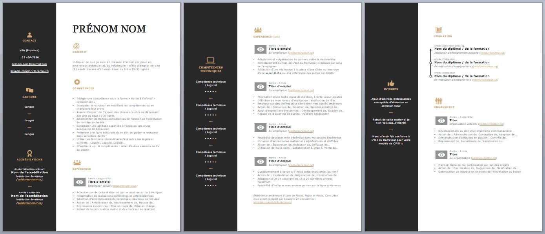 Aperçu MS Word d'un CV - L'Efficace D