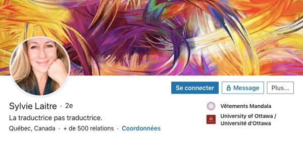 Profil LinkedIn de Sylvie Laitre