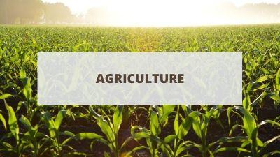 Objectifs pour un CV en agriculture