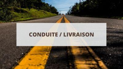 Objectifs pour un CV en conduite et livraison