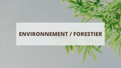 Objectifs pour un CV en environnement et foresterie