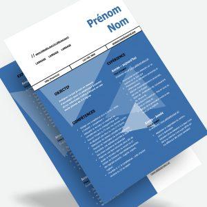 Modèle de CV québécois – Le moderne (A)